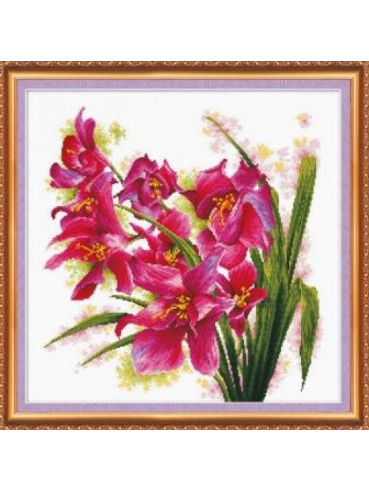 Лиловые орхидеи