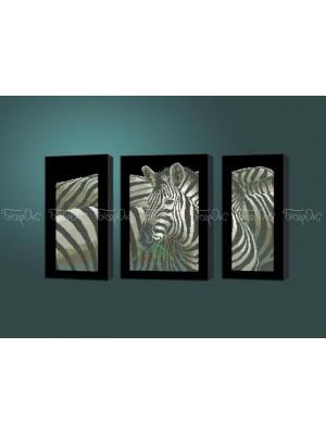 Зебры триптих
