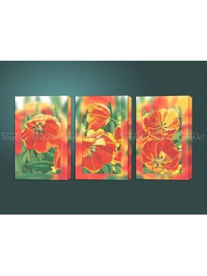 Яркие тюльпаны триптих