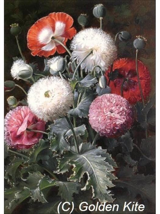 Натюрморт з червоними, рожевими і білими маками 1828 Голден Кайт