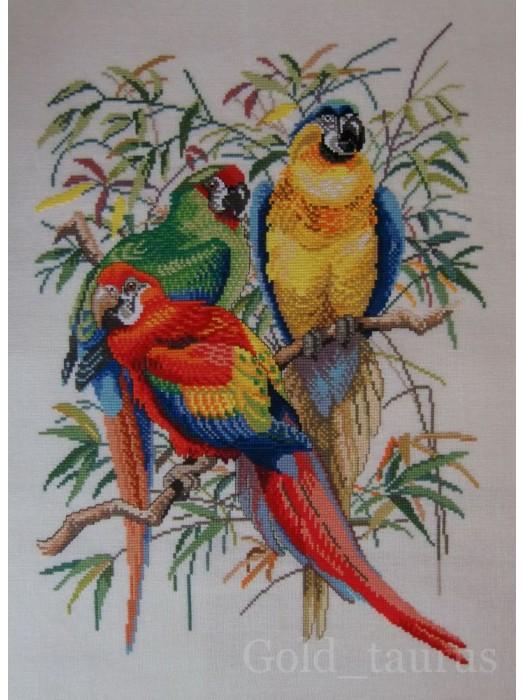 Попугаи - набор для вышивания