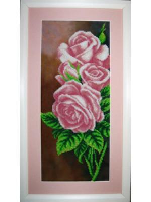 Розы Б-011